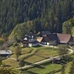Ferienhaus_Urlaub_Bauernhof_Waldheimat_Steiermark_8